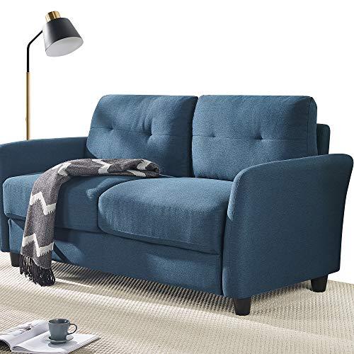 ZINUS Ricardo Loveseat Sofa / Tufted Cushions / Easy, Tool-Free Assembly, Lyon Blue