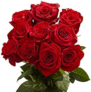 order roses online for delivery