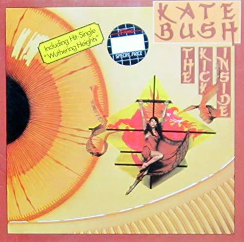 The Kick Inside [Vinyl LP]