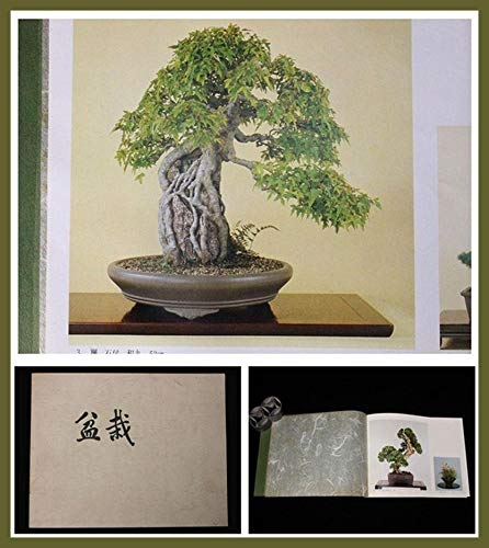 Semi organici: BO23 1975 giapponese vecchia'BONSAI' photo collezione di libri #bonkeipot da Farmerly