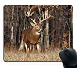 Smooffly Gaming Mouse Pad Custom,Deer Grass Forest Hunting Customized Rectangle Non-Slip Rubber Mousepad Gaming Mouse Pad