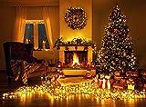 Idena 8325068 - LED Lichterkette mit 200 LED bunt, mit 8 Stunden Timer Funktion, Innen und Außenbereich, für Partys, Weihnachten, Deko, Hochzeit, als Stimmungslicht, ca. 27,9 m - 7