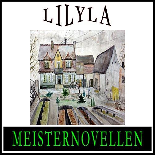 Meisternovellen 9 audiobook cover art