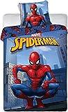 Juego de funda nórdica Spider-Man – Juego de funda nórdica