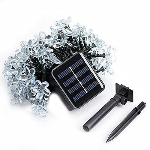 Luces Solares de Cadena, La Secuencia Al Aire Libre Impermeable Enciende Las Luces Decorativas de Energía Solar para El Jardín, Patio, Yarda, Navidad, Decoración del árbol,Blue-6.5M