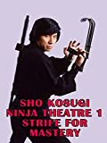 Sho Kosugi Ninja Theater 1 Strife For Mastery