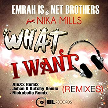What I Want (Remixes)
