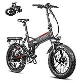 Bicicleta de Montaña Eléctrica de 20 Pulgadas Motor 750W, Bicicleta Eléctrica Plegable con Batería Panasonic 48V13.6AH,Bicicleta MTB Neumáticos Gordos Velocidad Máxima 45 km/h