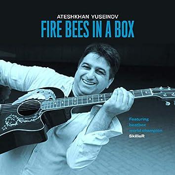 Ateshkhan Yuseinov: Fire Bees in a Box