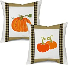 Autumn Outdoor Pillows