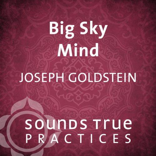 Big Sky Mind Titelbild