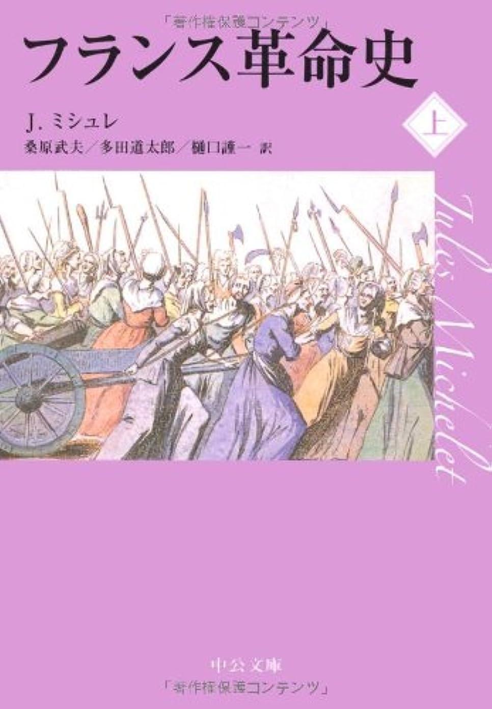 フレア後世台無しにフランス革命史〈上〉 (中公文庫)