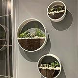 Ecosides Set mit 3 runden Pflanzentöpfen zum Aufhängen an der Wand, Terrarium, Luftpflanzen-Halter, Wandbehang, für Sukkulenten, in verschiedenen Größen (weiß)