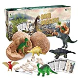 Dinosaur Toys, Dino Egg Dig Kit for Kids - Break Open 12 Unique Dinosaur Eggs and Discover 12 Cute Dinosaurs - Easter Archaeology Science STEM Toys - Best Crafts Gifts for Boys & Girls Age 3, 4, 5, 6