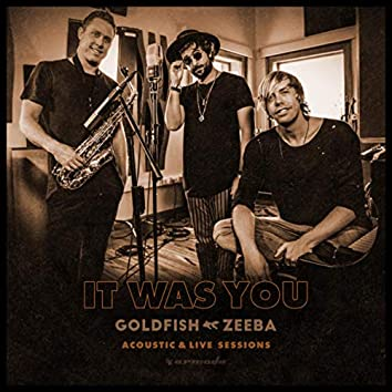 It Was You (With Zeeba) (Acoustic & Live Sessions)