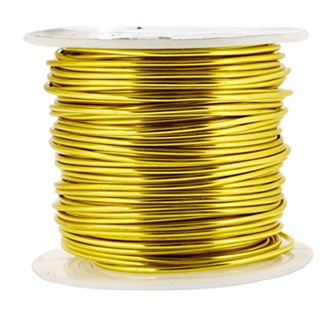 Mandala Crafts Anodized Aluminum Wire for Sculpting, Armature, Jewelry Making, Gem Metal Wrap, Garden, Colored and Soft, 1 Roll(16 Gauge, Light Gold)