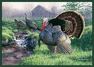 Best wild turkey rug Reviews