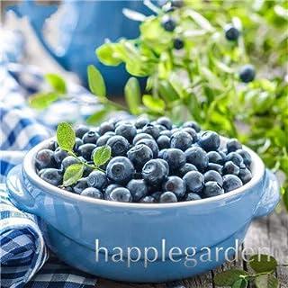 Bloom Green Co. Â¡Venta!100 Unids/bolsa Arándano Bonsai Planta de Fruta de Fruta Orgánica Comestible Enano Arándano Bonsai Ãrbol Planta en maceta para el jardín de su casa: 18