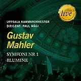G.Mahler : Symphony No. 1 Blumine
