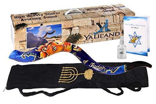 SHOFAR Polish Polished Hand painted Set 30-32' Kudu Horn Yemenite Lion of judah + Bag + Spray + Guide + Carrying Box Case