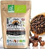 Nabür - Clous de Girofle Bio de Madagascar 100 gr 🌴 GRADE A 🌴 Gourmet, Cuisine, Infusion, Riche en Huile essentielle