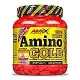 Amix - Whey Amino Gold - Suplemento Alimenticio - Evita la Degradación Muscular - Contiene BCAA´s y Glutamina - Nutrición Deportiva - Contiene 360 Comprimidos
