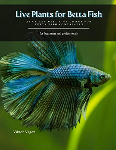 Live Plants for Betta Fish: 22 of the best live grows for betta fish сontainers