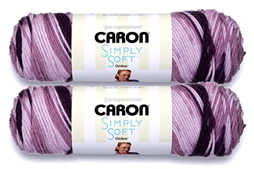Caron Simply Soft Ombres Acrylic Yarn (2-Pack)