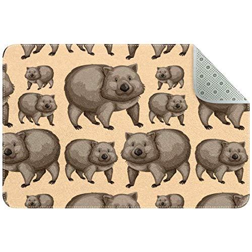 Yoliveya Alfombra suave para el suelo, lindos Wombats animales absorbentes, antideslizantes, alfombra de goma para la entrada en casa, oficina de 60,9 x 40,6 cm