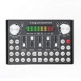 Ctzrzyt Mezclador Profesional DJ Equipo en Vivo Tarjeta de Sonido Conjunto de MicróFono Youtube/Videoconferencia/Juegos/Zoom/Skype