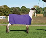 Weaver Leather Sheep and Goat Underblanket Extra Small/Small Purple