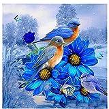 Pintar por Numeros para Adultos Animal-Pájaro DIY Kit De Regalo De Pintura Al Óleo con Juego De Pintura Digital para Decoración del Hogar 16X20 Pulgadas(Sin Marco)