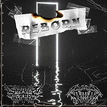 Reborn (feat. Nimda)