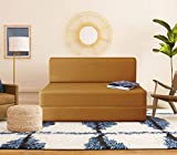 Dr Smith Moshi Fabric Sofa Cum Bed | 3x6 One Seater Sofa Cums Bed - Perfect for Guests and Living Room Golden
