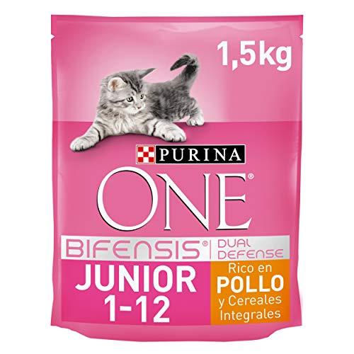 Purina One Junior de 1 à 12 mois - au Poulet et aux Céréales Complètes - 1,5 KG - Croquettes pour Chaton - Pack de 6