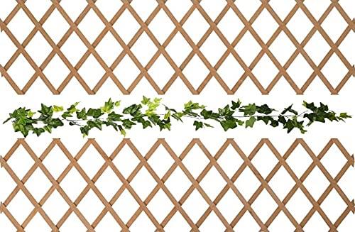 Celosia Holz-Zäune, ausziehbar, für den Garten, Wand-Blumenkasten, einzigartig und elegant, 1 Stück