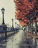 YXQSED Madera enmarcada DIY Pintura por Números, Pint por Número de Kits for Adultos Mayores Avanzada Niños Joven-El Amor romántico otoño 16X20 Inch
