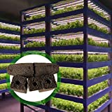juman634 Bloque de vivero Bloque de plántulas hidropónicas de hortalizas Huecos Herramienta de jardinería Cultivo sin Suelo Bloque de plántulas para Plantar cobertizos