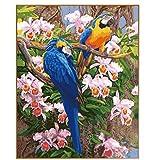 ERQINGSZH Pintura Digital Paisaje de Primavera Parrot Coloración Digital Marco de DIY Pintura por números Pintura al óleo Arte de la Pared Decoración de la Imagen para la decoración del hogar