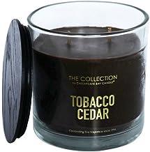 Chesapeake Bay Candle TA95183 jar Candle, Brown