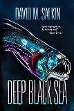 Deep Black Sea (English Edition)