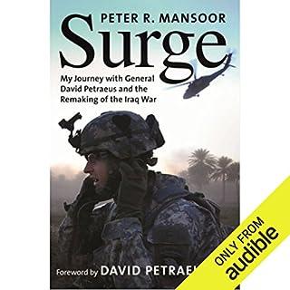 Surge audiobook cover art
