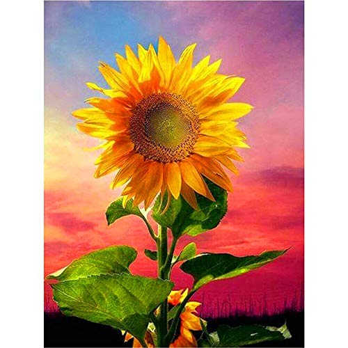 DIY 5D Diamond Painting by Number Kit for Adult Diamond Art Cross Stitch Kits Resin Crystal Rhinestone Handmade Embroidery Set Mosaic for Home Wall Decor Y1 Sunflower Round Drill,50x70cm