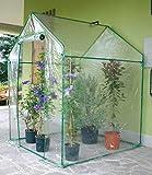 Photo Gallery rama serra da giardino a casetta in acciaio con telo clematis verde