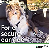 BELISY Hunde-Sicherheits-Gurt fürs Auto – höchste Sicherheit für Dich und Deinen Hund – mit besonders elastischer Ruckdämpfung für maximalen Komfort – passend für alle Hunderassen – höchste Markenqualität - 3