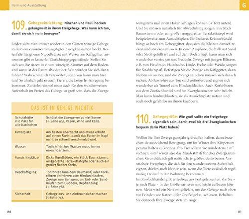 300 Fragen zum Zwergkaninchen: Experten-Tipps aus der Praxis (GU Der große Kompass) - 9