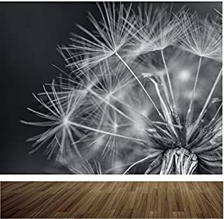 Black and White Dandelion Close Up Nature Wallpaper Mural Feature Wall Wm324 XXL 3000mmx2400mm