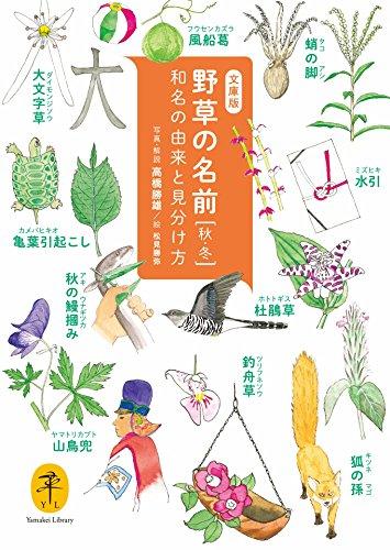 ヤマケイ文庫 野草の名前 秋冬 和名の由来と見分け方の詳細を見る