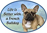 E&S Imports Dog Breed Magnets - Car Magnets - Refrigerator Magnets - Superior UV Protective Magnet - UV Protected - French Bulldog Gift