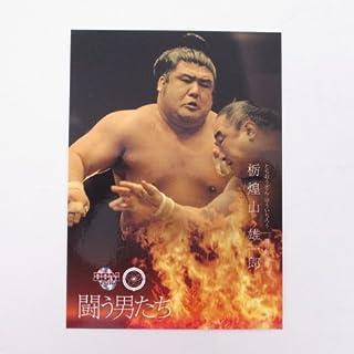 BBM2016大相撲カード「彩」■レギュラーカード■No.64/栃煌山雄一郎/闘う男たち...